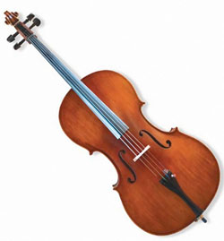 * SPECIAL VIEW CAPETOWN Jinyin cello 44 size ( setup value R400 included free)