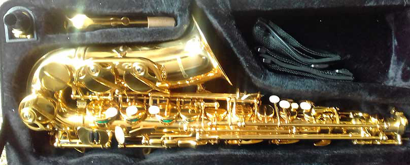 USA BAC Alto Saxophones from  R6499 and more.