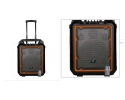FCA10 Portable PA System with rechargable battery and USB SD Bluetooth, wheels