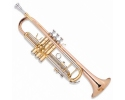 Sonata high Grade Monel Valves Rose Brass Horn  Trumpet in Bb