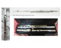 BAC Apprentice  Flute with setup + 1 year complete performance guarantee. View CAPETOWN