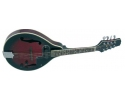 Blue Moon  Electric Mandolin