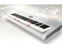 Casio LK247 Lighting 61 keys  Keyboard (white)