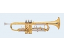 Talent Trumpet in Bb TA-LTR190L