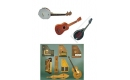 BANJO UKULELE MANDOLIN and other fretted instruments