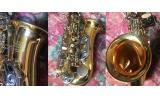 BAC Apprentice Alto Saxophone * View Capetown UP*