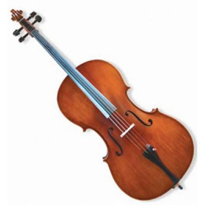 * SPECIAL CAPETOWN Jinyin cello 44 size including free setup valued R400